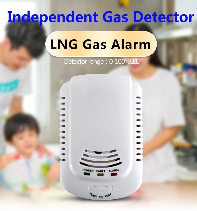 Support Oem S Indoor Use Intelligent Gas Leak Alarm